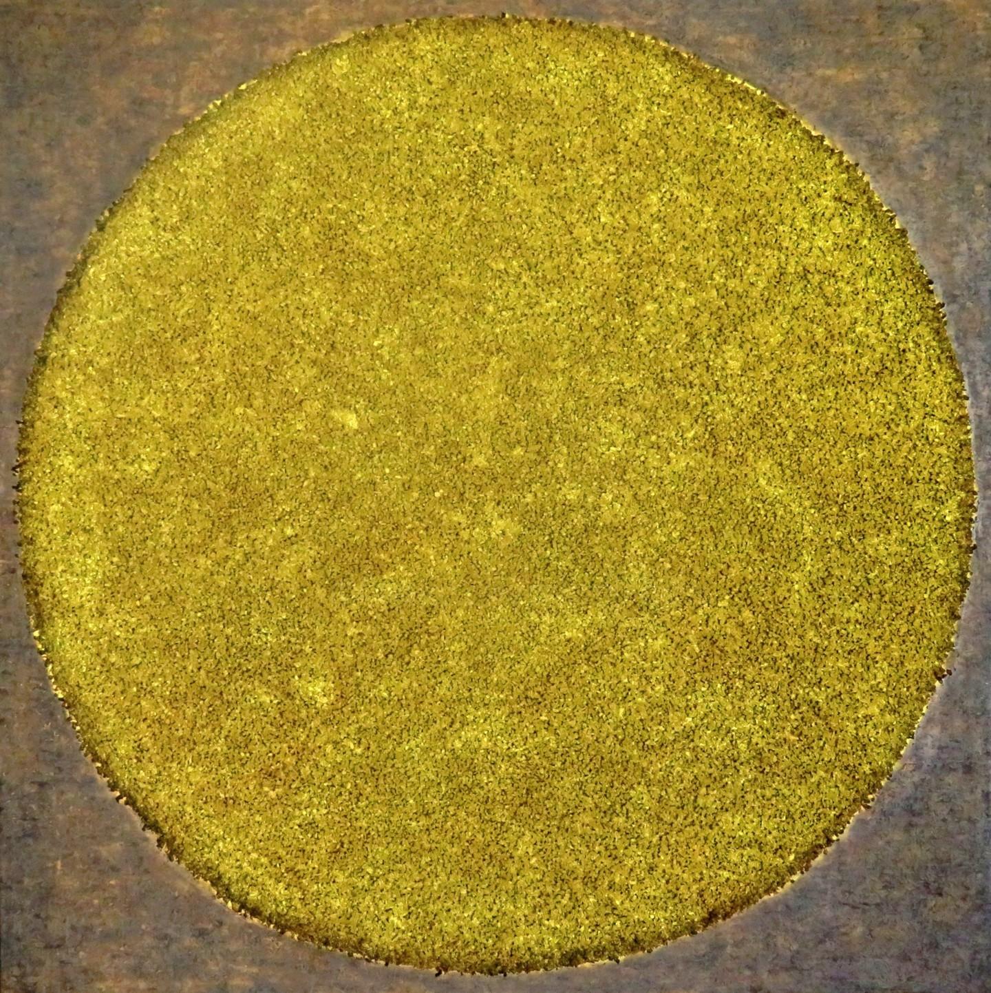 Carla Sá Fernandes - The Circle #1